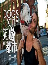 狗在都市第一季