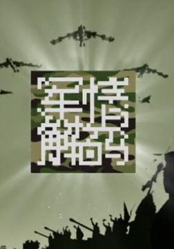 军情解码2013