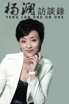 杨澜访谈录2011 海报