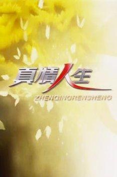 真情人生2012