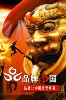 品牌中国2012