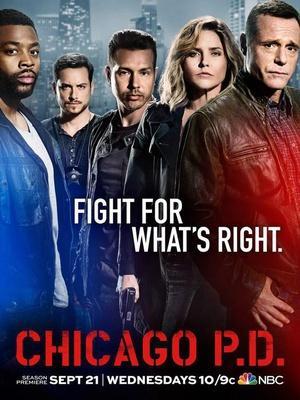芝加哥警署第五季 海报